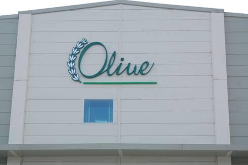 OLIVE HEALTHCARE—UNIT 2:   by Marginn