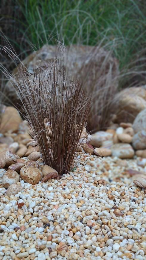 Tipi garden: rustic Garden by Paul Newman Landscapes