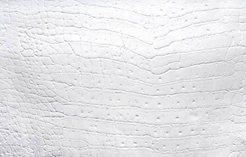 White Croco: Saiが手掛けたアートです。