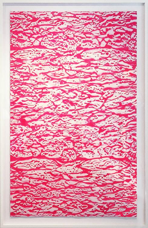 Pink Meat: Saiが手掛けたアートです。