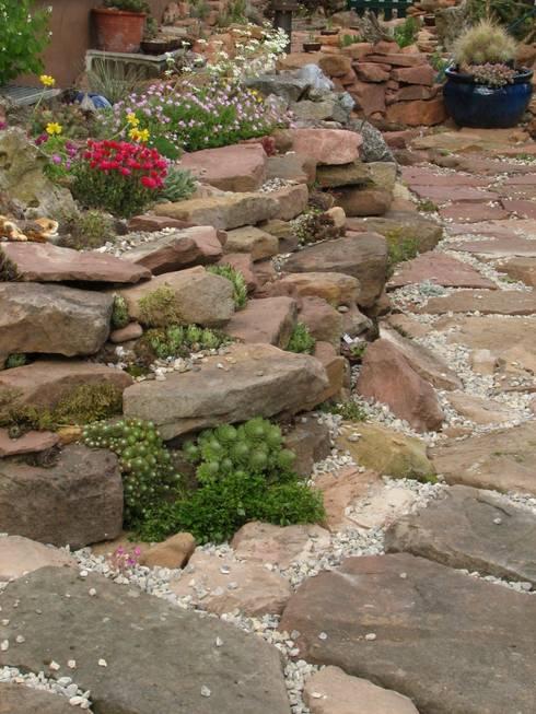 Auswahl der Steine ist Geschmacksache:  Garten von Andreae Kakteenkulturen