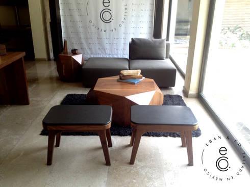 LOBELIA Lounge / LAVA STOOLS: Salas de estilo moderno por Eban & Co.
