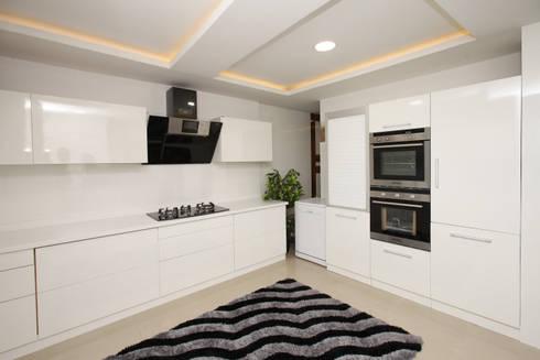 Frosty White: asian Kitchen by Classic Kitchen Pvt Ltd