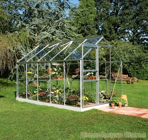 Halls Popular 6x10 Greenhouse:  Garden  by Greenhouse Stores