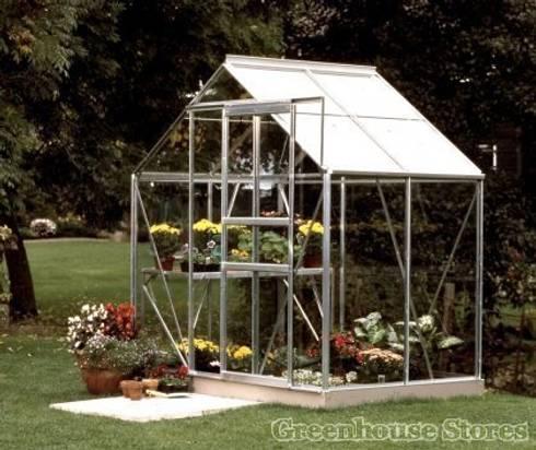 Vitavia Venus 6x4 Greenhouse: modern Garden by Greenhouse Stores