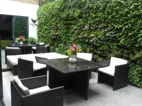 Calvin Street Project:  Walls & flooring by Treebox vertical growers