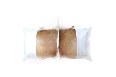Springbok/Leather Cushion:  Household by From Africa