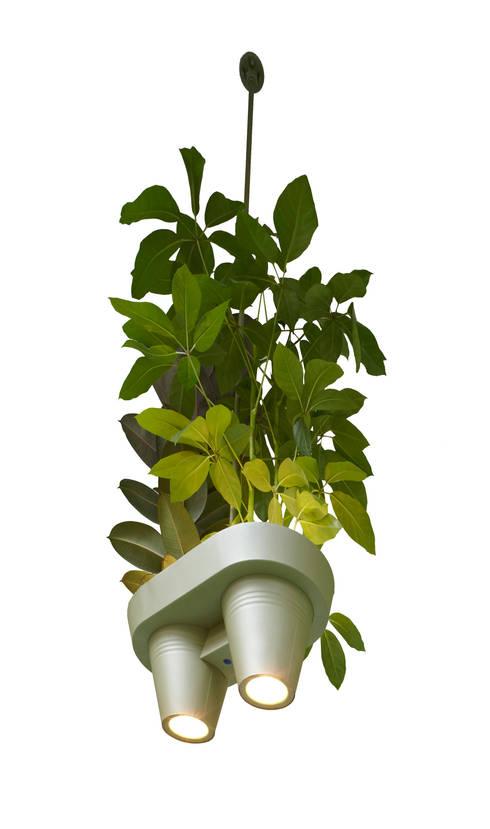 Bucketlight:  Binnenbeplanting door Studio Roderick Vos