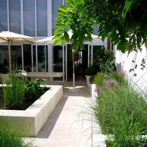 A contemporary courtyard design:   by Joanne Alderson Design