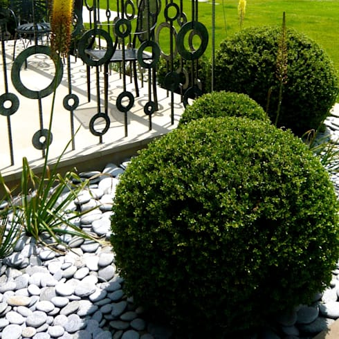 Topiary balls & bespoke railing for contemporary styling:   by Joanne Alderson Design