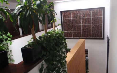 Aplicación Mural Bamboo: Arte de estilo  por Murales Artisticos Decorativos