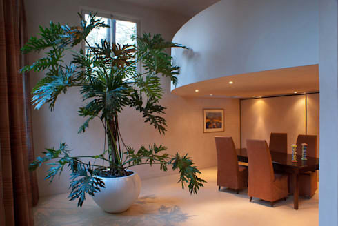 Housen and Terraces in Amsterdam:  Binnenbeplanting door Boom in Huis  / Baum im Haus / Trees in the Home
