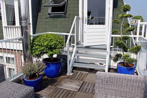 Housen and Terraces in Amsterdam: klassiek Balkon, veranda & terras door Boom in Huis  / Baum im Haus / Trees in the Home