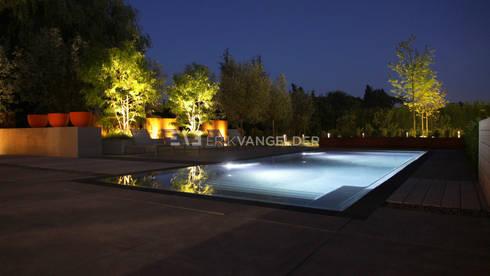 Pool Garden Design Rotterdam: moderne Tuin door ERIK VAN GELDER | Devoted to Garden Design
