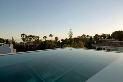 Jellyfish House: modern Zwembad door Wiel Arets Architects