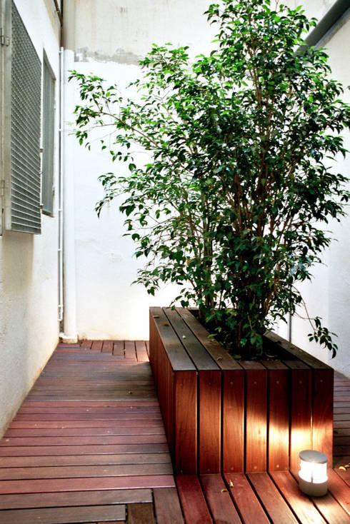 Jardines de estilo moderno por Miel Arquitectos