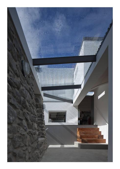 Fenster von Denizen Works