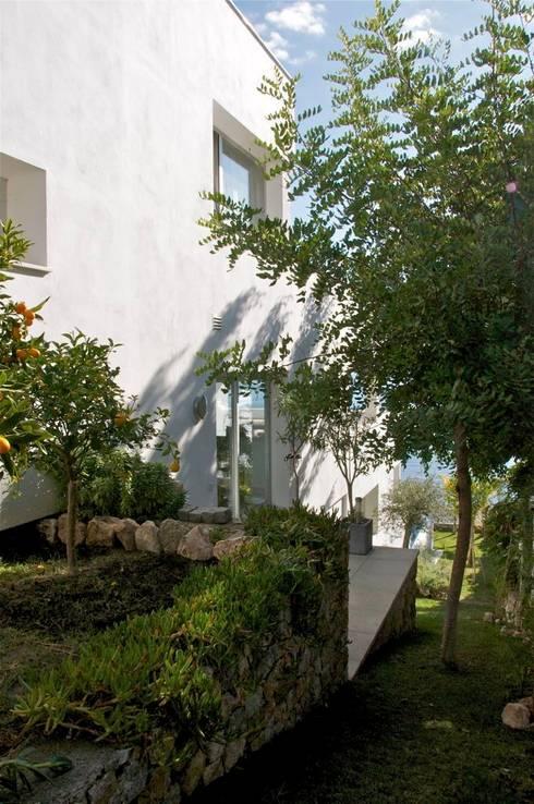 Сады в . Автор – SH asociados - arquitectura y diseño