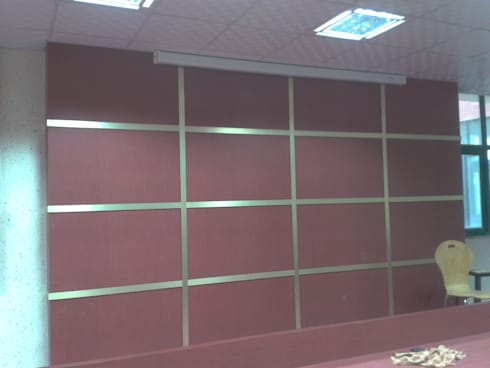 redgold projector wall:  Conference Centres by srinteriors