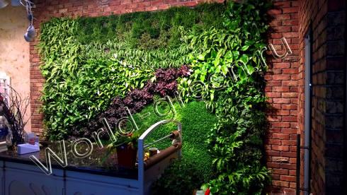Фитостена в цветочном салоне г.Минск: Зимние сады в . Автор – Зеленый мир