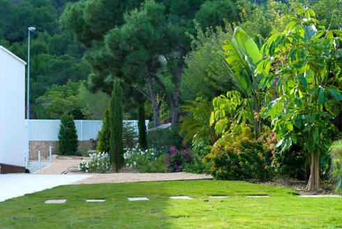 Jard n de matices en villa alicantina por david jim nez for Diseno jardin mediterraneo