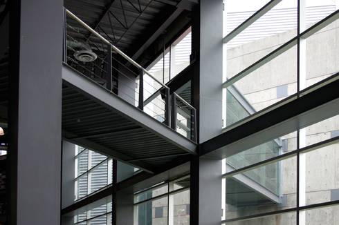 Puente de la sala de lectura al acervo: Escuelas de estilo  por LEAP Laboratorio en Arquitectura Progresiva