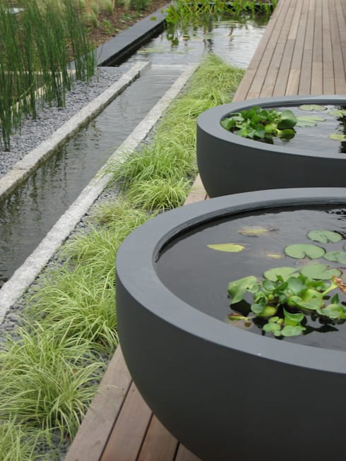 Rill and water bowls: minimalistic Garden by Rae Wilkinson Design Ltd
