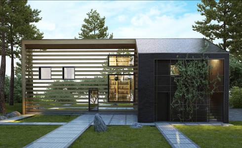 алкохаус: Дома в . Автор – Архитектурное бюро и дизайн студия 'Линия 8'