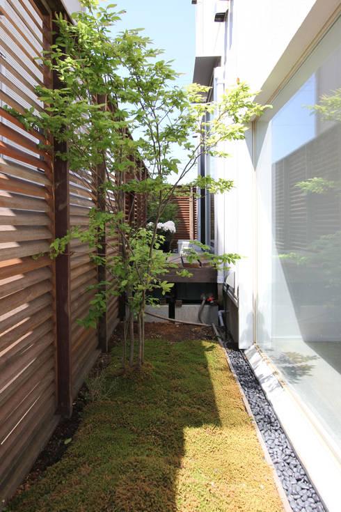 緑地: FCDが手掛けた庭です。