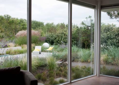 Planten met duinkarakter tot aan gevel. Het landschap naar binnen halen: moderne Tuin door Andrew van Egmond (ontwerp van tuin en landschap)