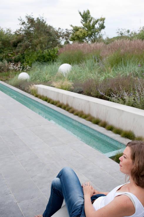 contrast tussen weelderige natuurlijke planten en strakke minimalistische architectuur: moderne Tuin door Andrew van Egmond (ontwerp van tuin en landschap)