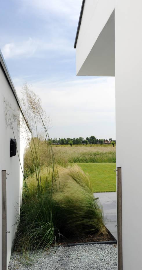 Mengsel van siergrassen die aansluit bij de polder- en weidekarakter: minimalistische Tuin door Andrew van Egmond (ontwerp van tuin en landschap)