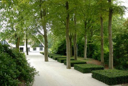 Villatuin Noord Holland: minimalistische Tuin door Andrew van Egmond (ontwerp van tuin en landschap)