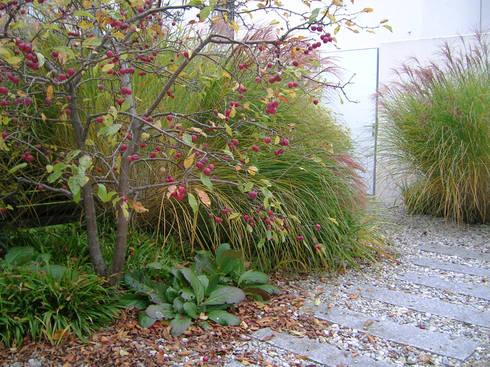 Gartenpflege München atriumgarten münchen riem blumen gärten homify
