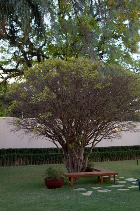 Alto de Pinheiros: Jardins modernos por Deborah Roig