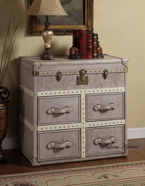 Vintage Leather Storage Cabinet:  Living room by Locus Habitat