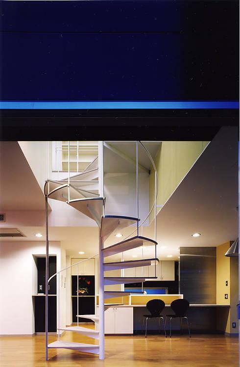 螺旋階段: 濱嵜良実+株式会社 浜﨑工務店一級建築士事務所が手掛けた廊下 & 玄関です。