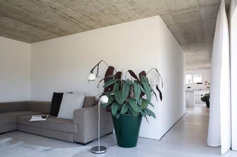 Low Budget Haus in Leutkirch by KARL+ZILLER Architektur   homify