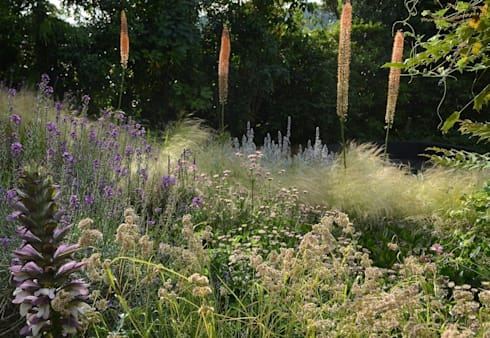 Planting on a bank with Eremurus: country Garden by Katherine Roper Landscape & Garden Design