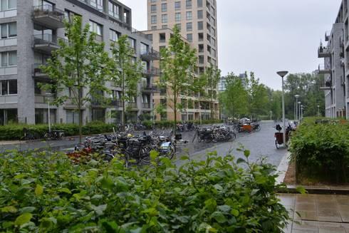 Andreas Ensemble Amsterdam:   door aksis landschapsarchitecten