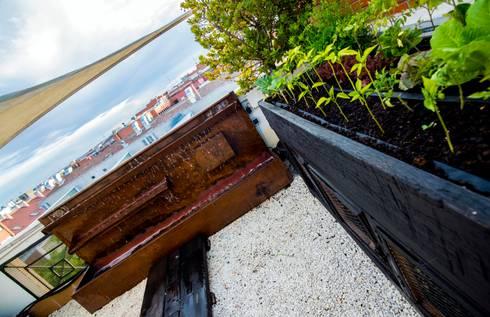 huerto urbano: Jardines de estilo rural de thesustainableproject
