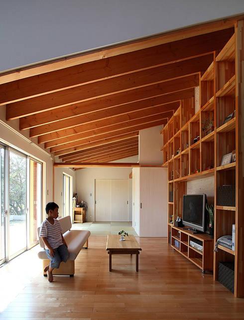 一色白山の家/house of isshikihakusan: haco建築設計事務所が手掛けたリビングです。