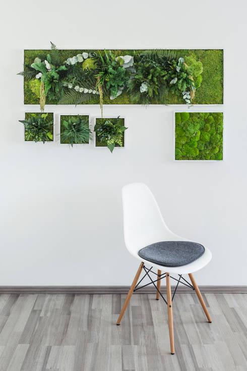Titelbild Kollektion styleGREEN im Style Ambiente:  Raumbegrünung von FlowerArt GmbH | styleGREEN