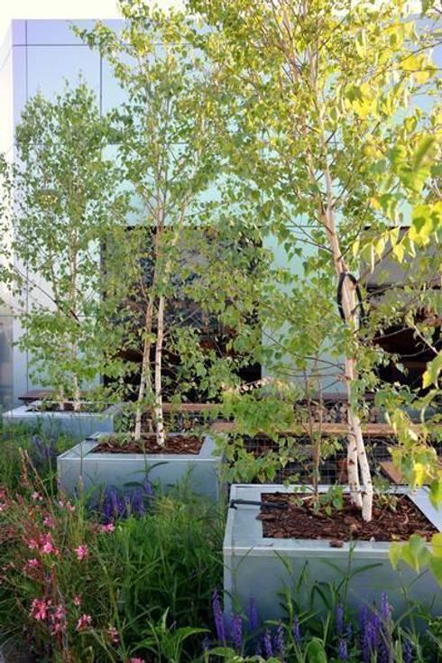 Terraza relax en marid de la paisajista jardines con for Alma de jardin pacheco