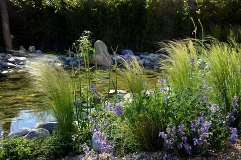 Jardin del estanque de la paisajista jardines con alma - Estanque de jardin ...