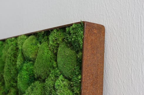 Kugelmoos im Roststahl Rahmen:  Raumbegrünung von FlowerArt GmbH | styleGREEN