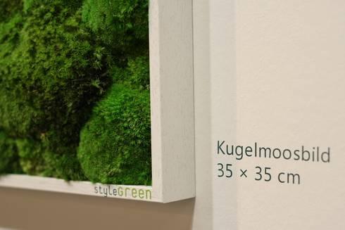 Detailansicht Kugelmoos:  Geschäftsräume & Stores von FlowerArt GmbH | styleGREEN