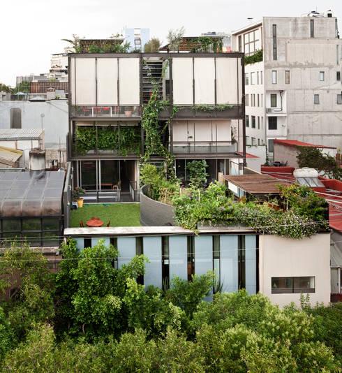 Edificio Teotihuacán: Jardines de estilo minimalista por Cm2 Management