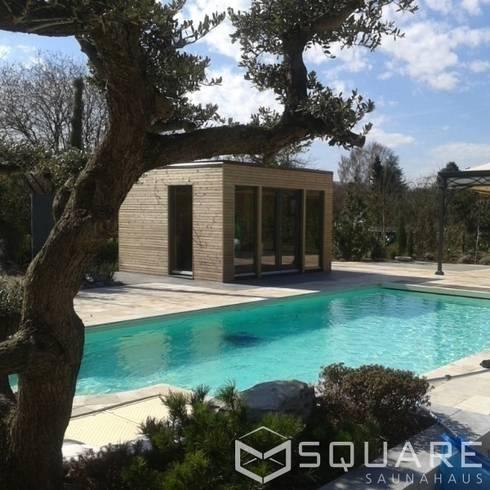 Saunahaus Square Xl Als Poolhaus Mit Sauna Fassade Larchenholz