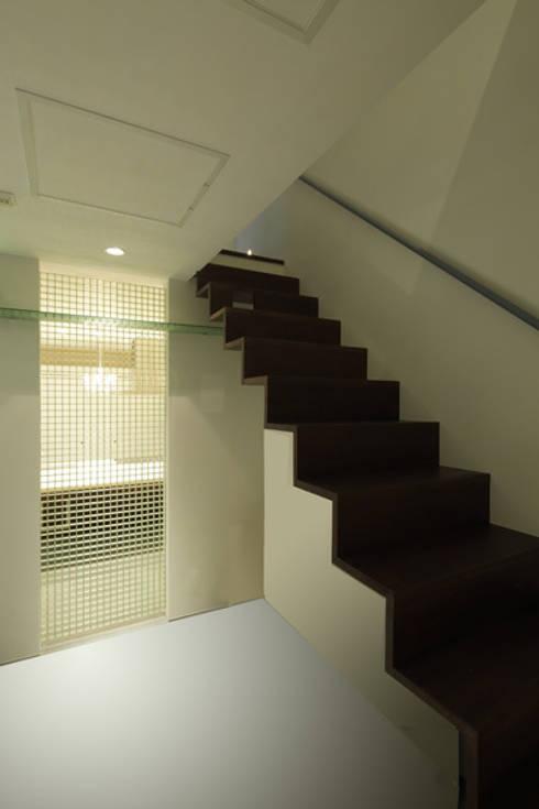 ねことひきこもる家 階段: アーキシップス古前建築設計事務所が手掛けた廊下 & 玄関です。